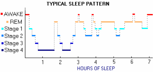 Image result for biorhythms and sleep